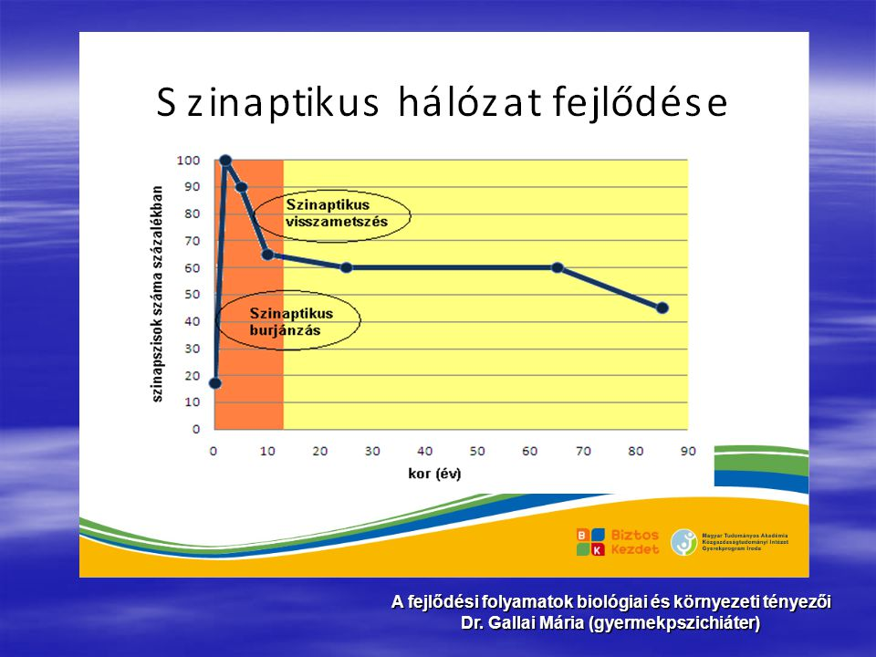 A fejlődési folyamatok biológiai és környezeti tényezői Dr. Gallai Mária (gyermekpszichiáter)