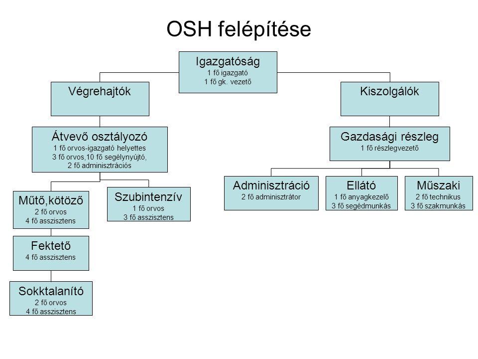 OSH felépítése Igazgatóság 1 fő igazgató 1 fő gk. vezető VégrehajtókKiszolgálók Átvevő osztályozó 1 fő orvos-igazgató helyettes 3 fő orvos,10 fő segél