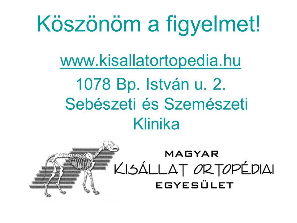Köszönöm a figyelmet! www.kisallatortopedia.hu 1078 Bp. István u. 2. Sebészeti és Szemészeti Klinika