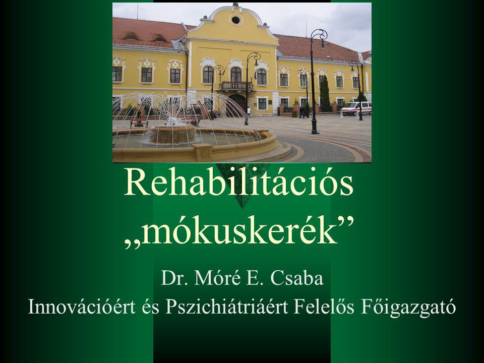 """Rehabilitációs """"mókuskerék"""" Dr. Móré E. Csaba Innovációért és Pszichiátriáért Felelős Főigazgató"""