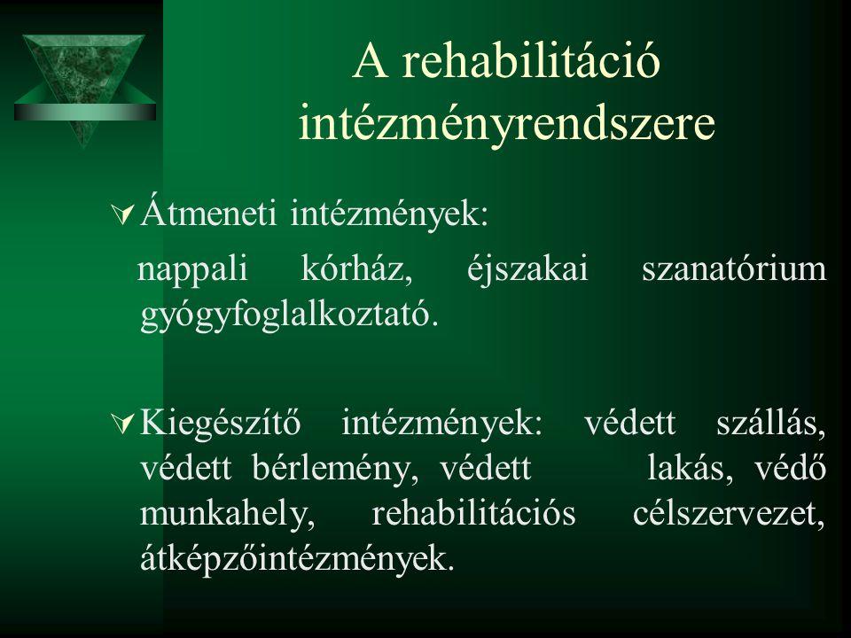 A rehabilitáció intézményrendszere  Átmeneti intézmények: nappali kórház, éjszakai szanatórium gyógyfoglalkoztató.  Kiegészítő intézmények: védett s