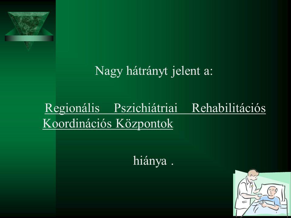 Nagy hátrányt jelent a: Regionális Pszichiátriai Rehabilitációs Koordinációs Központok hiánya.