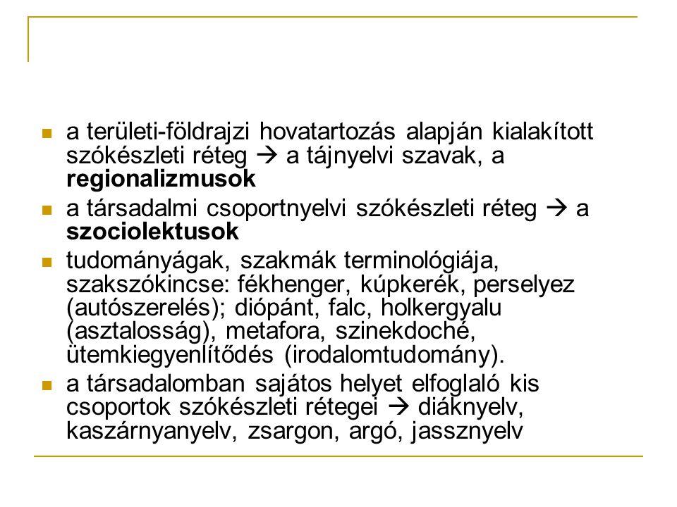 a területi-földrajzi hovatartozás alapján kialakított szókészleti réteg  a tájnyelvi szavak, a regionalizmusok a társadalmi csoportnyelvi szókészleti