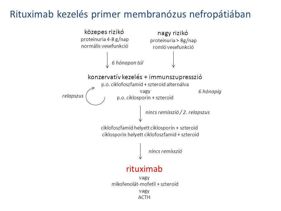 közepes rizikó proteinuria 4-8 g/nap normális vesefunkció nagy rizikó proteinuria > 8g/nap romló vesefunkció 6 hónapon túl konzervatív kezelés + immun