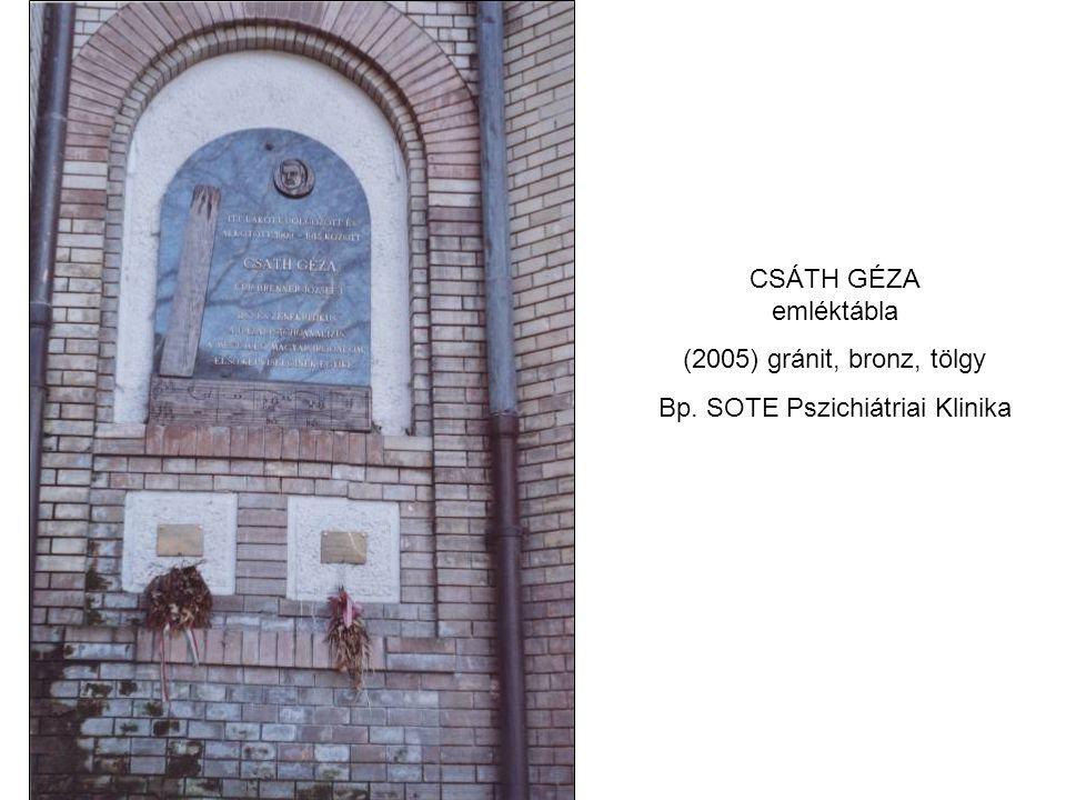 CSÁTH GÉZA emléktábla (2005) gránit, bronz, tölgy Bp. SOTE Pszichiátriai Klinika