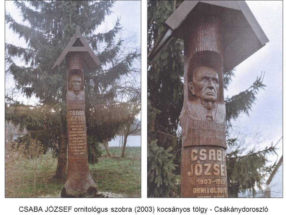 CSABA JÓZSEF ornitológus szobra (2003) kocsányos tölgy - Csákánydoroszló