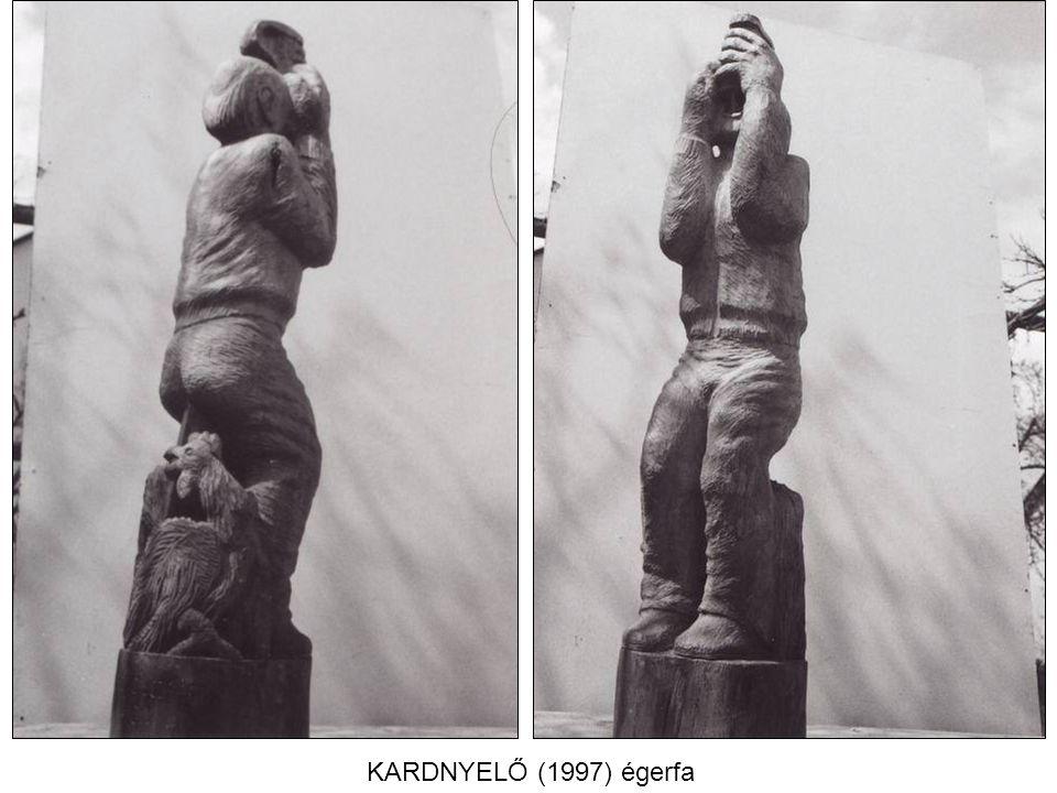 KARDNYELŐ (1997) égerfa