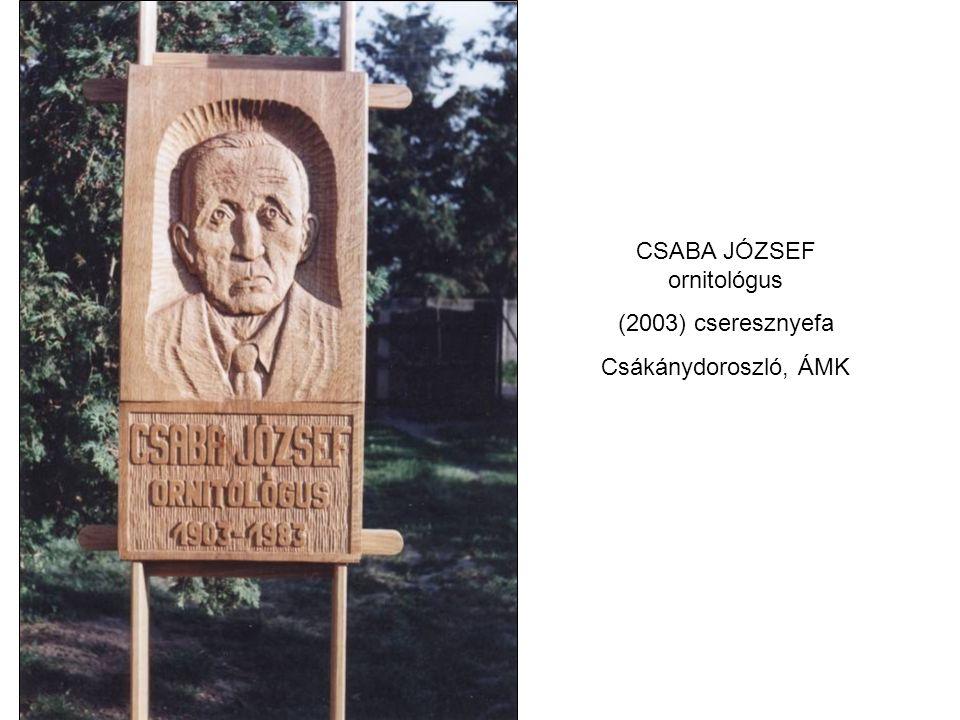 CSABA JÓZSEF ornitológus (2003) cseresznyefa Csákánydoroszló, ÁMK