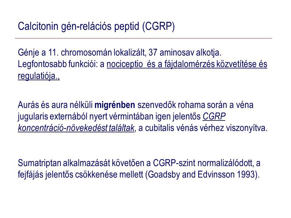 Calcitonin gén-relációs peptid (CGRP) Génje a 11.chromosomán lokalizált, 37 aminosav alkotja.