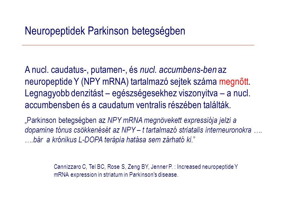 Neuropeptidek Parkinson betegségben A nucl.caudatus-, putamen-, és nucl.