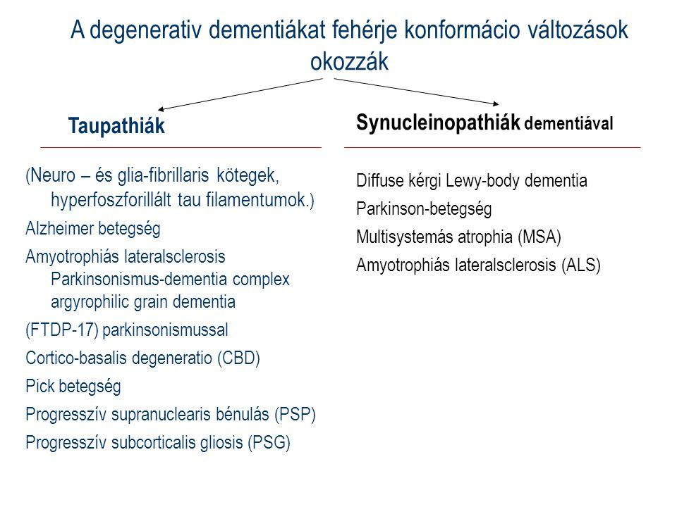 Taupathiák ( Neuro – és glia-fibrillaris kötegek, hyperfoszforillált tau filamentumok.) Alzheimer betegség Amyotrophiás lateralsclerosis Parkinsonismus-dementia complex argyrophilic grain dementia (FTDP-17) parkinsonismussal Cortico-basalis degeneratio (CBD) Pick betegség Progresszív supranuclearis bénulás (PSP) Progresszív subcorticalis gliosis (PSG) Synucleinopathiák dementiával Diffuse kérgi Lewy-body dementia Parkinson-betegség Multisystemás atrophia (MSA) Amyotrophiás lateralsclerosis (ALS) A degenerativ dementiákat fehérje konformácio változások okozzák