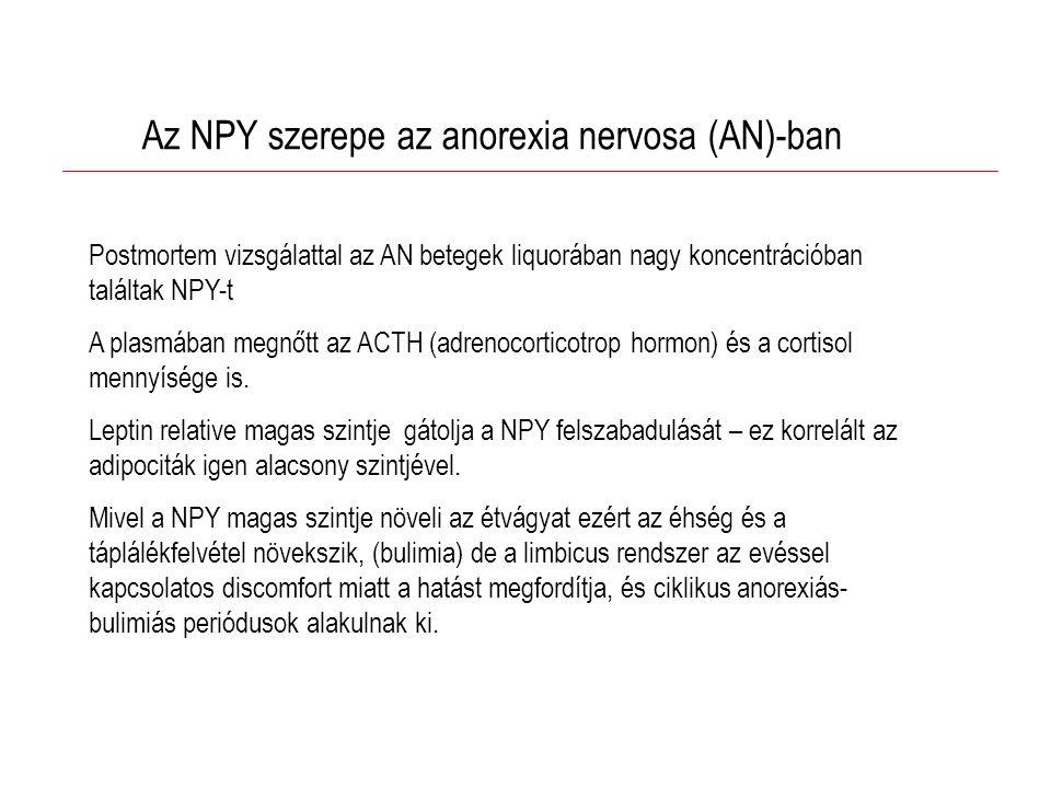 Az NPY szerepe az anorexia nervosa (AN)-ban Postmortem vizsgálattal az AN betegek liquorában nagy koncentrációban találtak NPY-t A plasmában megnőtt az ACTH (adrenocorticotrop hormon) és a cortisol mennyísége is.