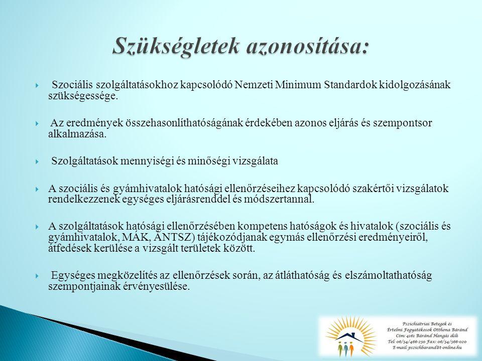  Szociális szolgáltatásokhoz kapcsolódó Nemzeti Minimum Standardok kidolgozásának szükségessége.