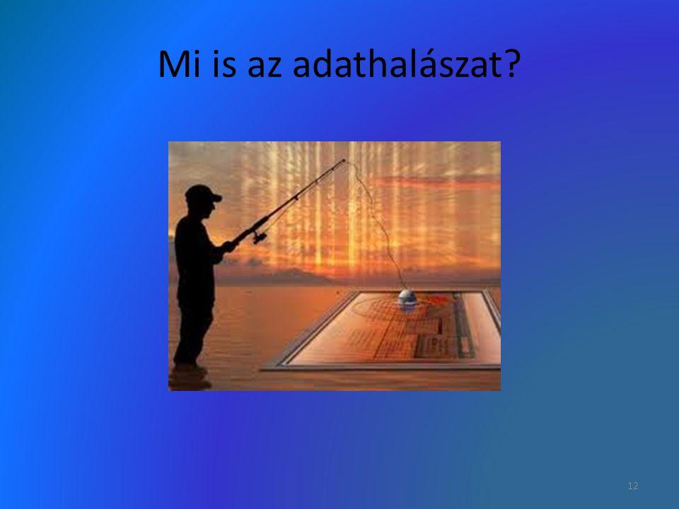 Mi is az adathalászat? 12
