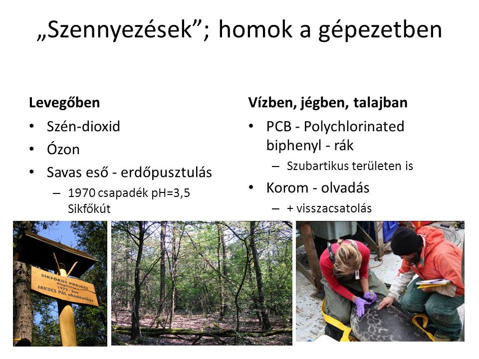 """""""Szennyezések ; homok a gépezetben Levegőben Szén-dioxid Ózon Savas eső - erdőpusztulás – 1970 csapadék pH=3,5 Sikfőkút Vízben, jégben, talajban PCB - Polychlorinated biphenyl - rák – Szubartikus területen is Korom - olvadás – + visszacsatolás"""