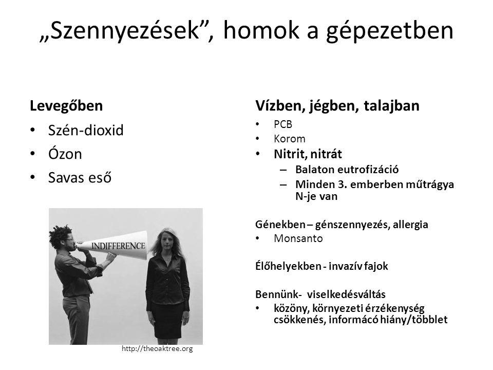 Kalapos Tibor (ELTE) előadásából