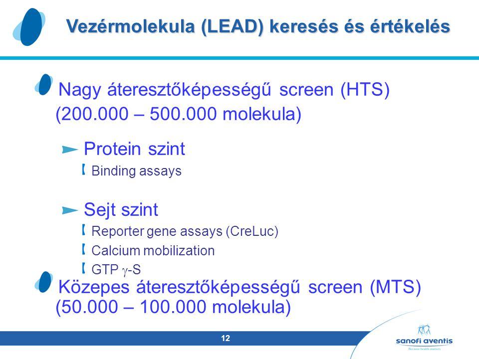 12 Nagy áteresztőképességű screen (HTS) (200.000 – 500.000 molekula) Protein szint Binding assays Sejt szint Reporter gene assays (CreLuc) Calcium mobilization GTP  -S Közepes áteresztőképességű screen (MTS) (50.000 – 100.000 molekula) Vezérmolekula (LEAD) keresés és értékelés