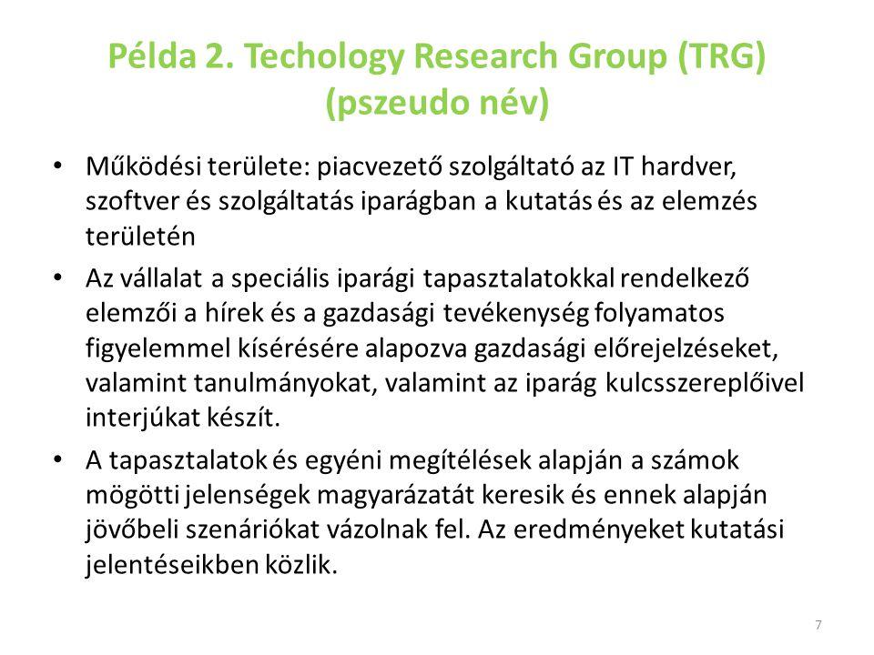 A TRG iparági szegmensek tucatjait vizsgálja, és minden egyes elemzési szegmens kis, önálló, profitcenter Habár a szervezet minden szegmensen belül ösztönzi a vállalkozói hozzáállást, nem segíti a TRG-ben a tudásáttételt.