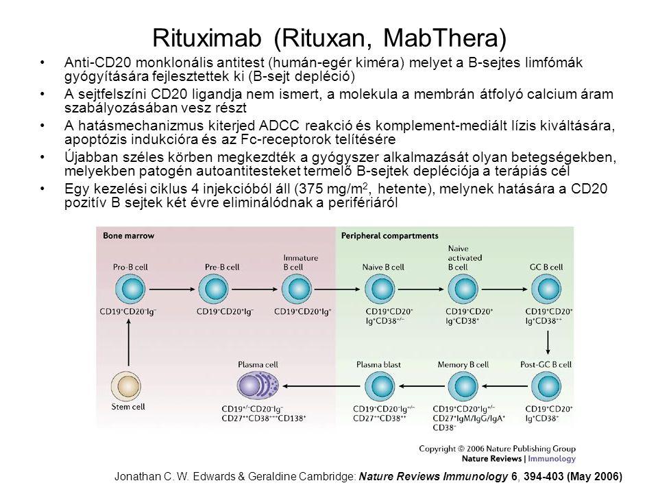 Rituximab (Rituxan, MabThera) Anti-CD20 monklonális antitest (humán-egér kiméra) melyet a B-sejtes limfómák gyógyítására fejlesztettek ki (B-sejt depl