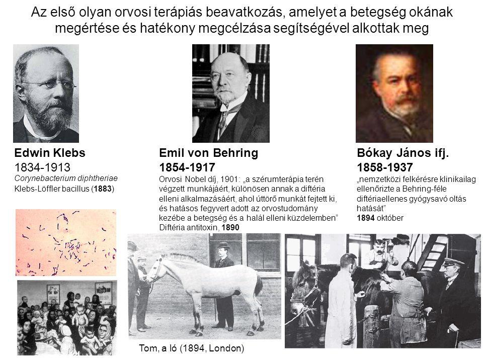 A biológiai terápiás eljárások fejlődésének mérföldkövei Szérum terápia a diftéria (torokgyík) gyógyítására (1890) Az agammaglobulinaemia (közönséges variabilis immundeficiencia) gyógyítása tisztított immunglobulin G-vel (IVIG, Humaglobin, stb…1952) A monoklonális antitesttermelés elvének és gyakorlatának kidolgozása (Köhler és Milstein, 1975), és az első egér-monoklonális antitestterápia kifejlesztése a transzplantációt követő rejekciós epizódok kezelésére (Muromonoab-OKT3, 1986)