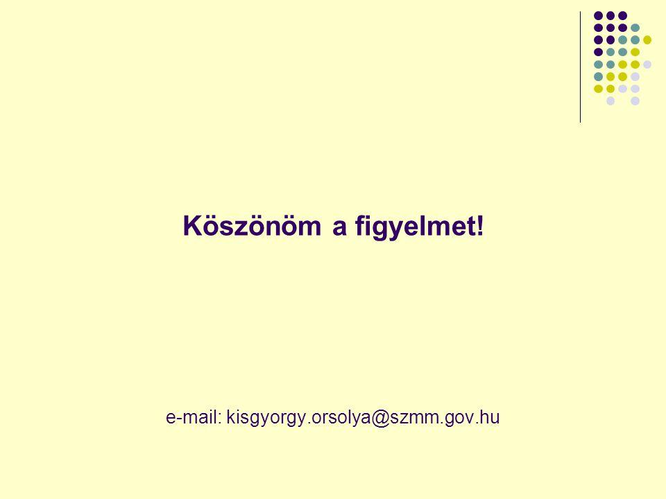 Köszönöm a figyelmet! e-mail: kisgyorgy.orsolya@szmm.gov.hu