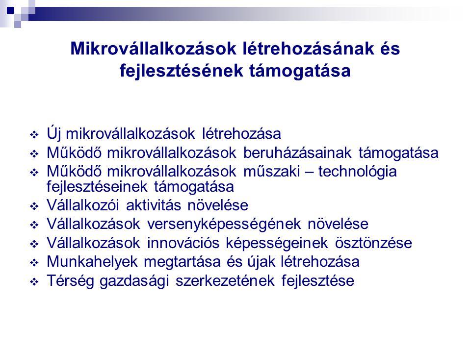 Mikrovállalkozások létrehozásának és fejlesztésének támogatása  Új mikrovállalkozások létrehozása  Működő mikrovállalkozások beruházásainak támogatá