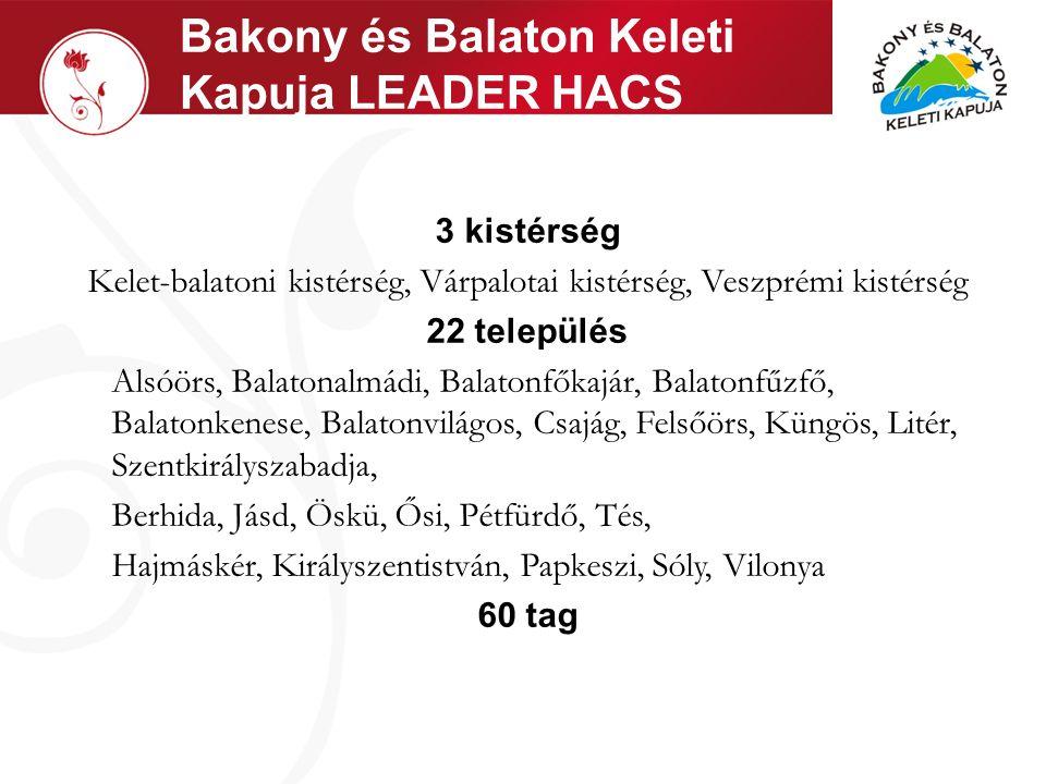 Helyzetelemzés K IINDULÓPONT : Közös ipari múlt Meghatározza a fejlesztési lehetőségeket Meghatározza a gazdasági és társadalmi helyzetet Meghatározza az infrastrukturális helyzetet Közös turisztikai célok Balatoni üdülőterület pozícionálása Bakony turisztikai lehetőségeinek bevonása Specifikált turisztikai arculat kialakítása, az eltérő térségek előnyeinek összekapcsolásából erény és előny kovácsolása Közösségfejlesztés igénye