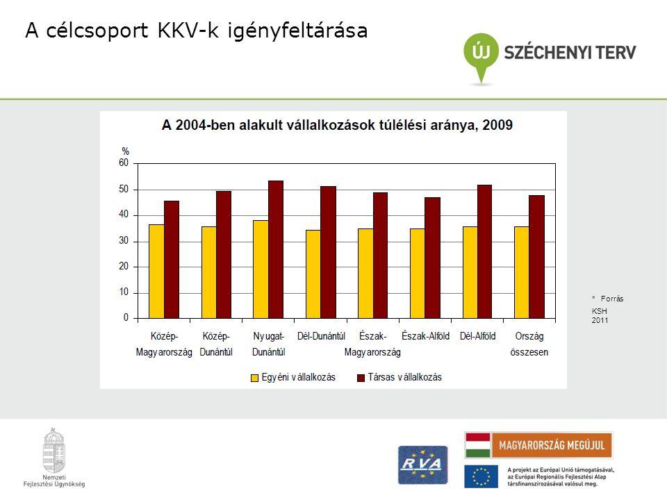 A célcsoport KKV-k igényfeltárása * Forrás KSH 2011