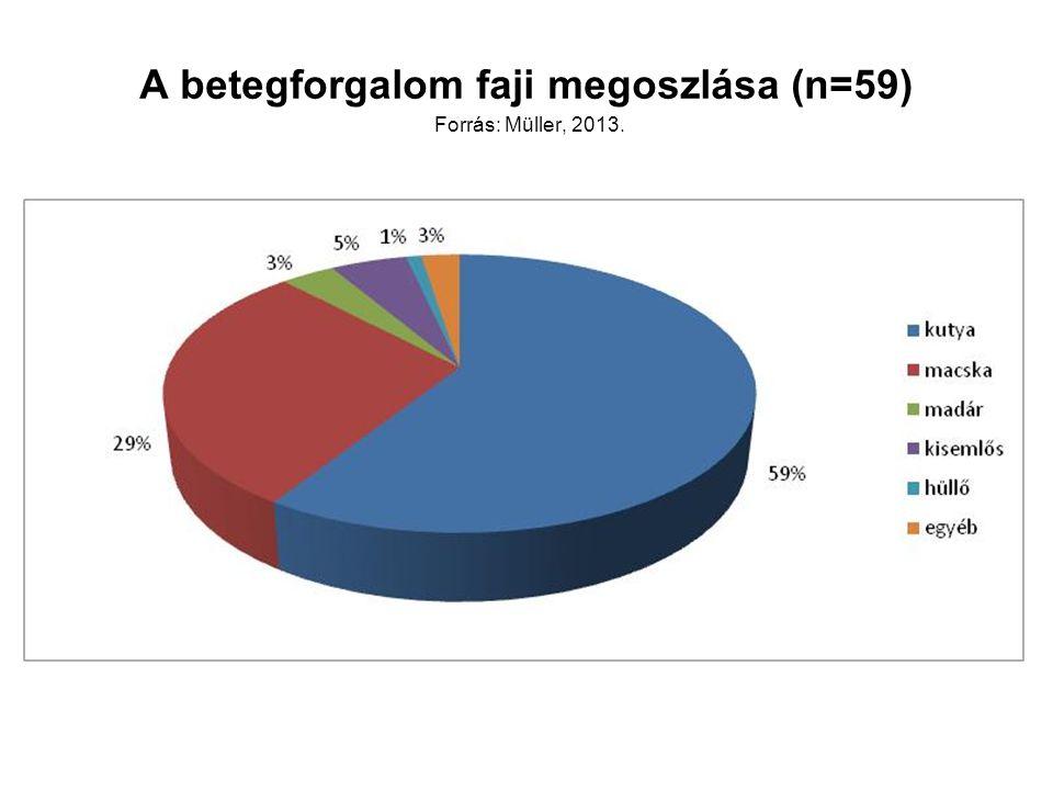 A betegforgalom faji megoszlása (n=59) Forrás: Müller, 2013.