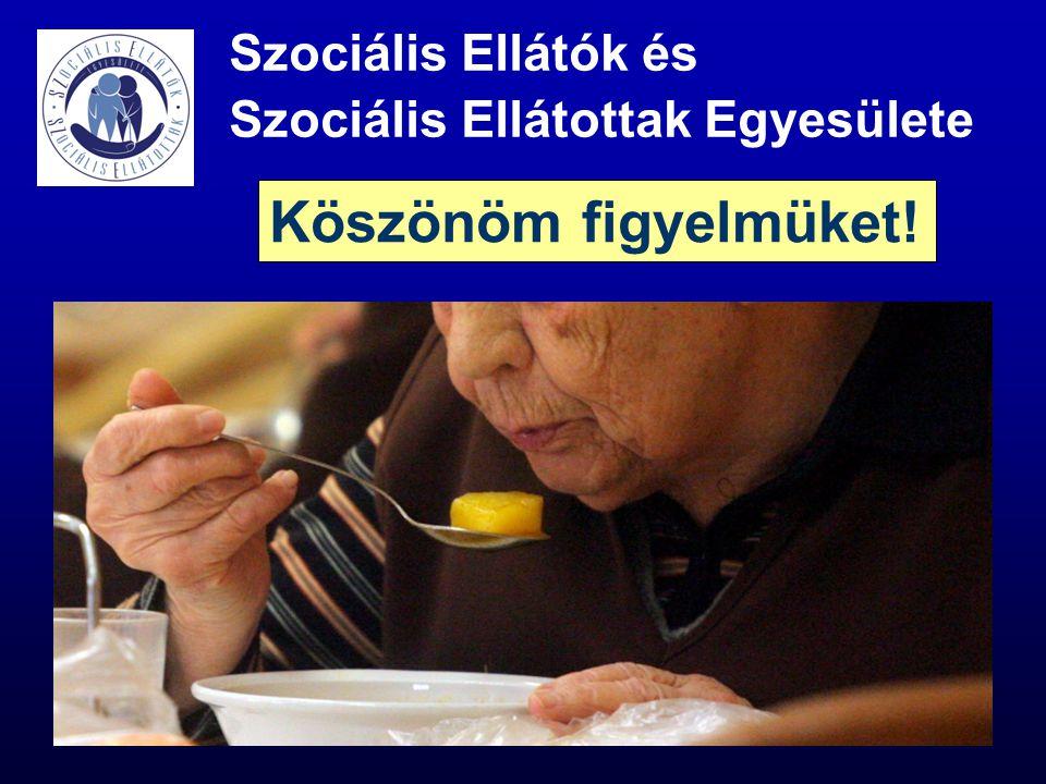 Szociális Ellátók és Szociális Ellátottak Egyesülete Köszönöm figyelmüket!