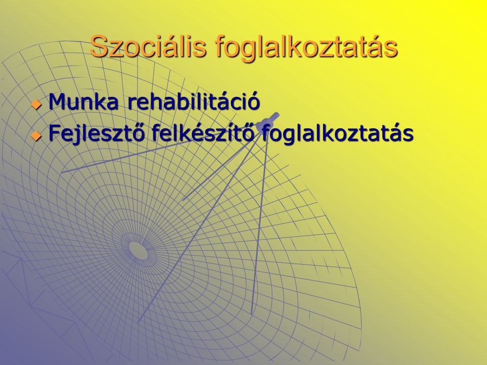 Szociális foglalkoztatás  Munka rehabilitáció  Fejlesztő felkészítő foglalkoztatás