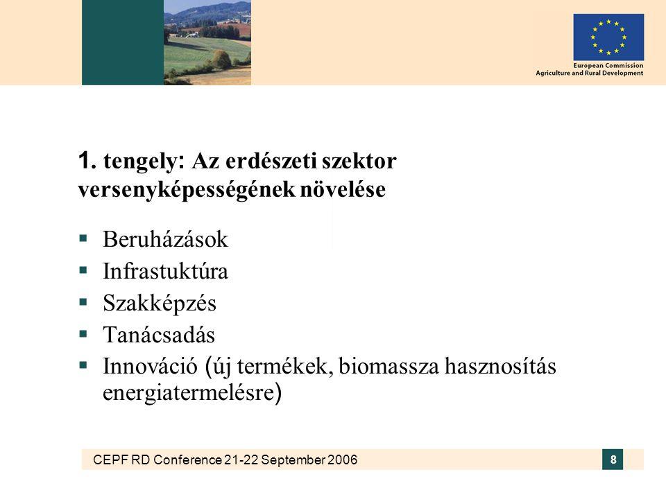 CEPF RD Conference 21-22 September 2006 8 1. tengely : Az erdészeti szektor versenyképességének növelése  Beruházások  Infrastuktúra  Szakképzés 