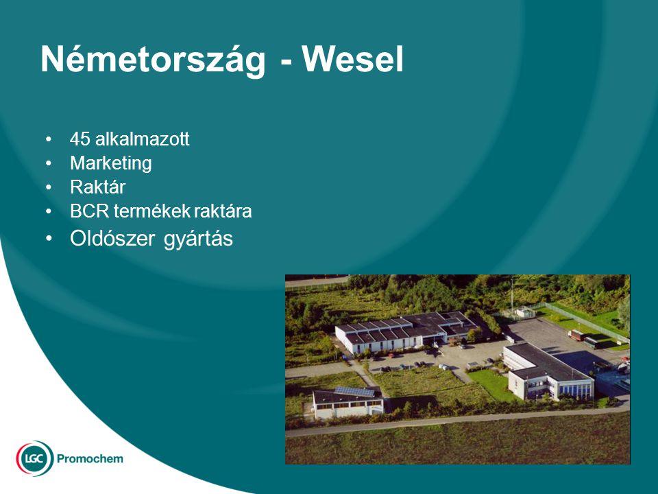 Németország - Wesel 45 alkalmazott Marketing Raktár BCR termékek raktára Oldószer gyártás