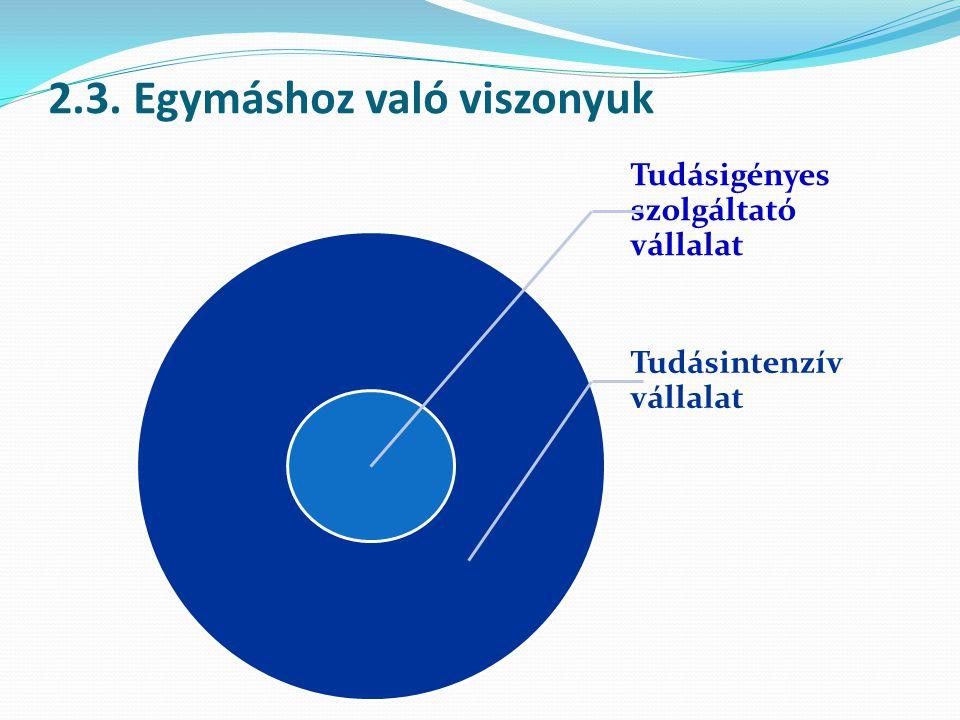 2.3. Egymáshoz való viszonyuk Tudásigényes szolgáltató vállalat Tudásintenzív vállalat