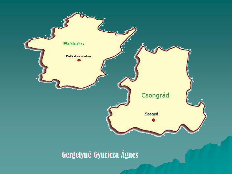 Gergelyné Gyuricza Ágnes