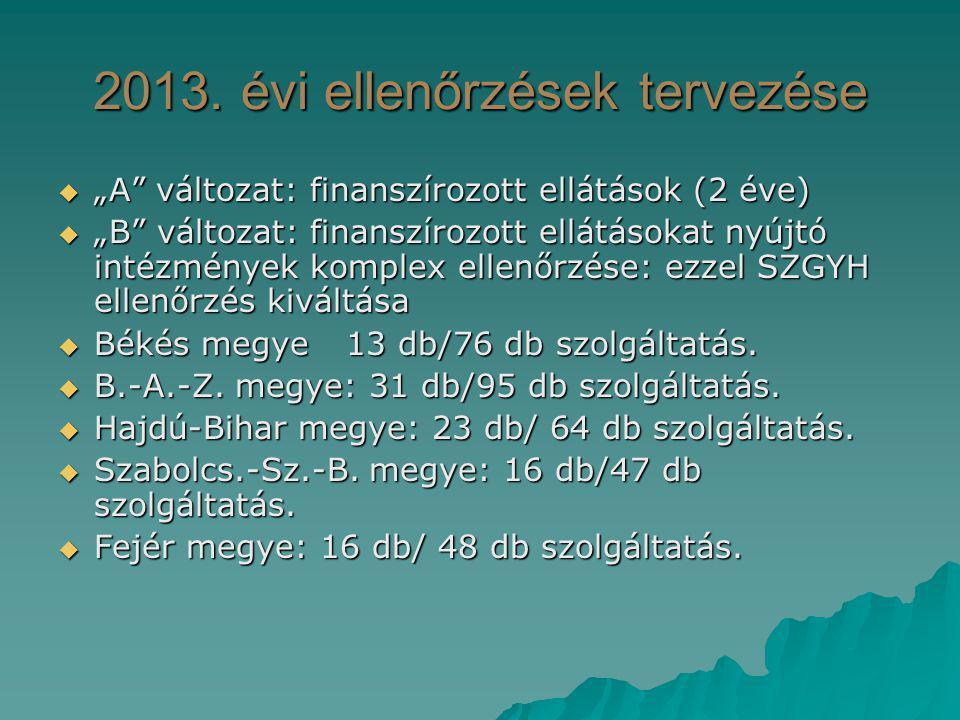 """2013. évi ellenőrzések tervezése  """"A"""" változat: finanszírozott ellátások (2 éve)  """"B"""" változat: finanszírozott ellátásokat nyújtó intézmények komple"""
