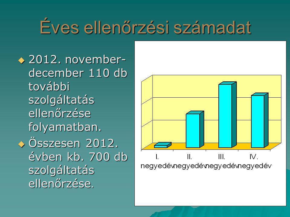 Éves ellenőrzési számadat  2012. november- december 110 db további szolgáltatás ellenőrzése folyamatban.  Összesen 2012. évben kb. 700 db szolgáltat