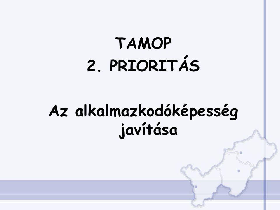 TAMOP 2. PRIORITÁS Az alkalmazkodóképesség javítása