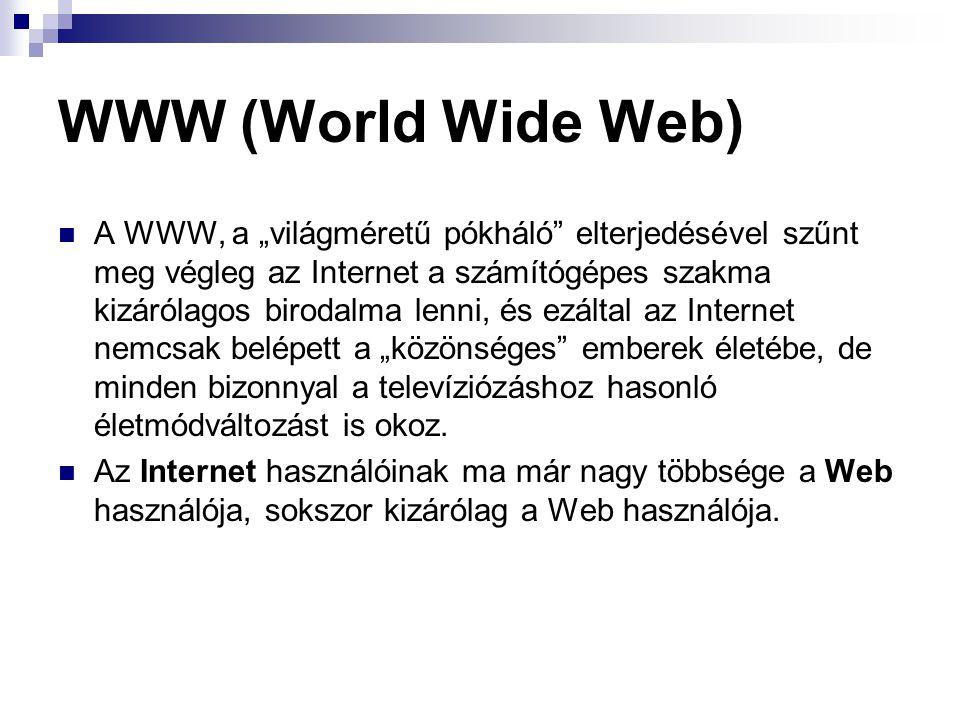 """WWW (World Wide Web) A WWW, a """"világméretű pókháló"""" elterjedésével szűnt meg végleg az Internet a számítógépes szakma kizárólagos birodalma lenni, és"""