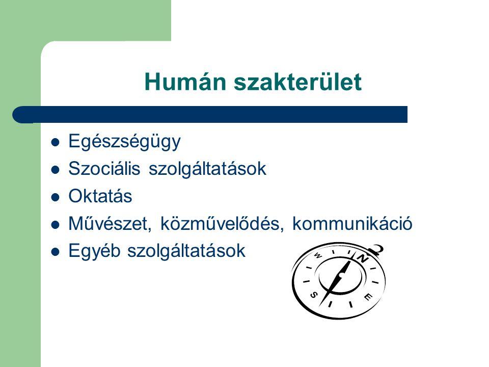Humán szakterület Egészségügy Szociális szolgáltatások Oktatás Művészet, közművelődés, kommunikáció Egyéb szolgáltatások