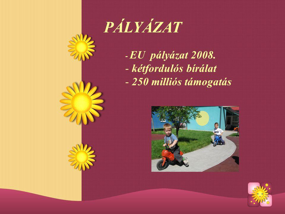 PÁLYÁZAT - EU pályázat 2008. - kétfordulós bírálat - 250 milliós támogatás