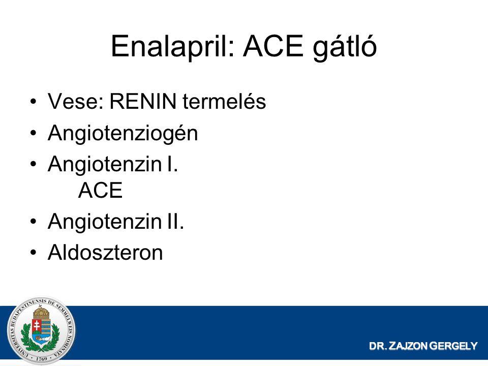 DR.Z AJZON G ERGELY Enalapril: ACE gátló Vese: RENIN termelés Angiotenziogén Angiotenzin I.