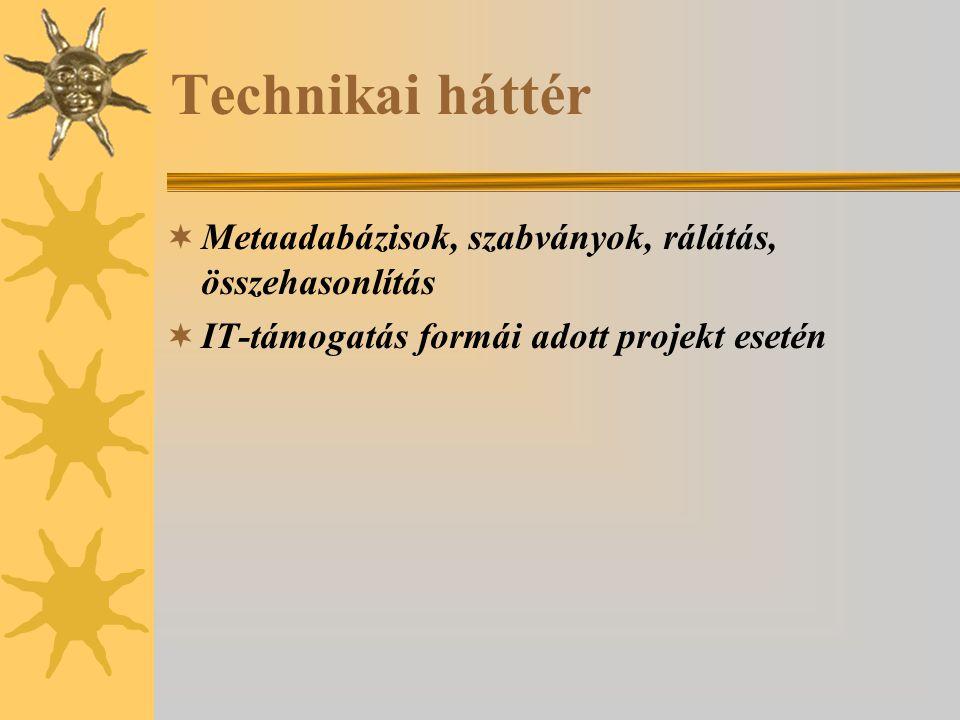 Technikai háttér  Metaadabázisok, szabványok, rálátás, összehasonlítás  IT-támogatás formái adott projekt esetén