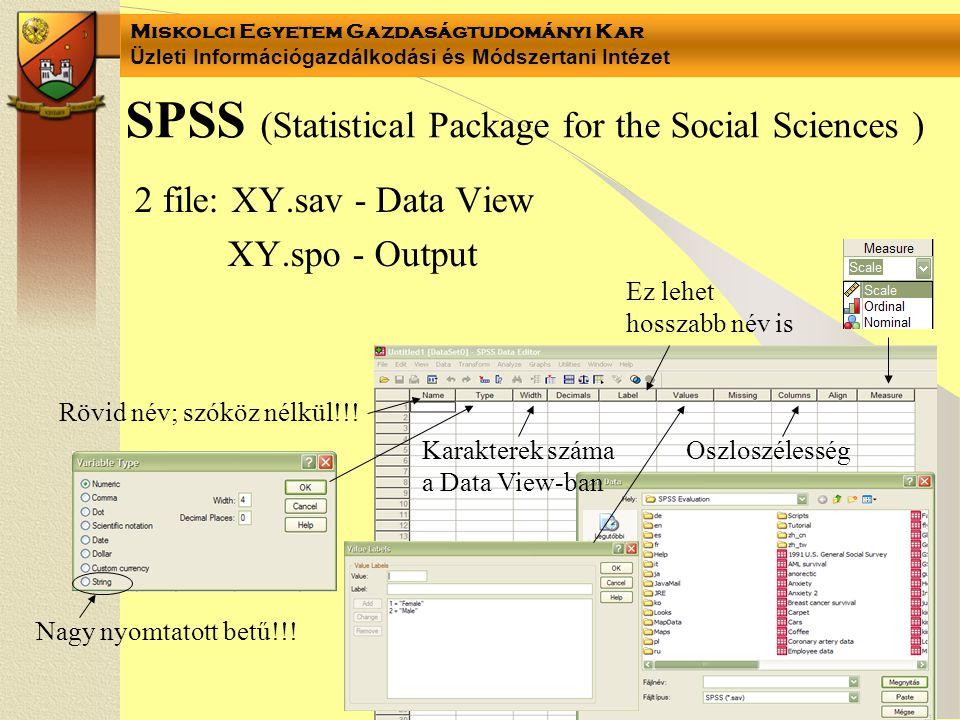 Miskolci Egyetem Gazdaságtudományi Kar Üzleti Információgazdálkodási és Módszertani Intézet SPSS (Statistical Package for the Social Sciences ) 2 file