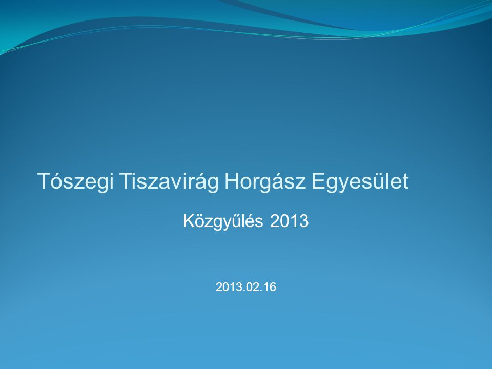 Tószegi Tiszavirág Horgász Egyesület Közgyűlés 2013 2013.02.16