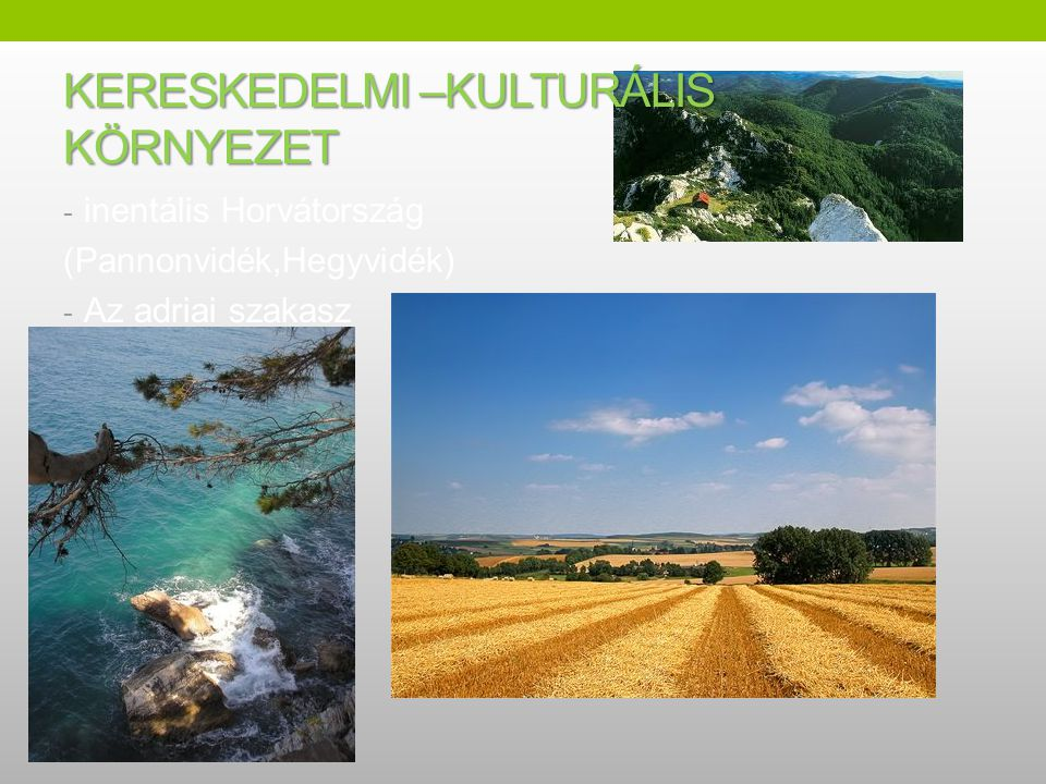 KERESKEDELMI –KULTURÁLIS KÖRNYEZET - inentális Horvátország (Pannonvidék,Hegyvidék) - Az adriai szakasz