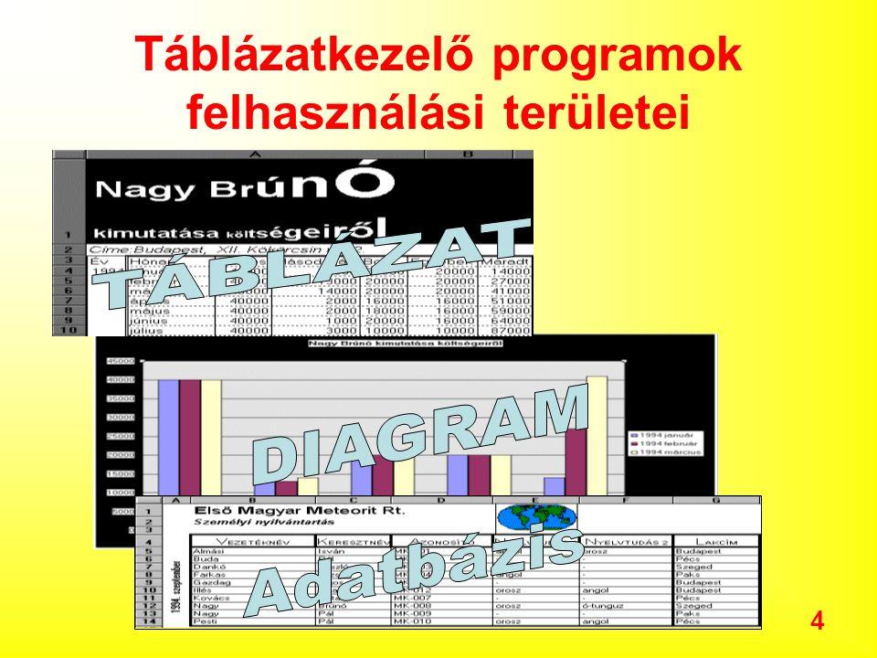 4 Táblázatkezelő programok felhasználási területei