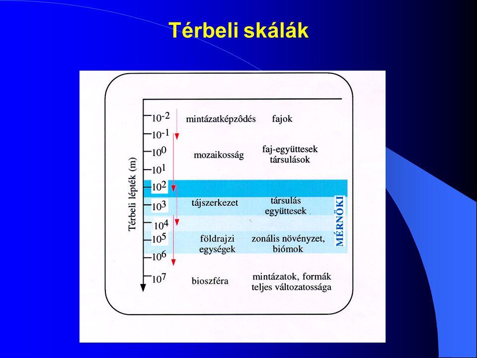 TERVEZÉSI SZEMPONTOK BOI 5 - RE A h = Szűrőágy felület m 2 -ben Q = Napi átlagvízhozam m 3 -ben C 0 = A befolyó víz BOI 5 koncentrációja mg/L-ben C t = Az elfolyó víz elvárt BOI 5 koncentrációja mg/L-ben K BOI = Állandó (0,1 m/nap)