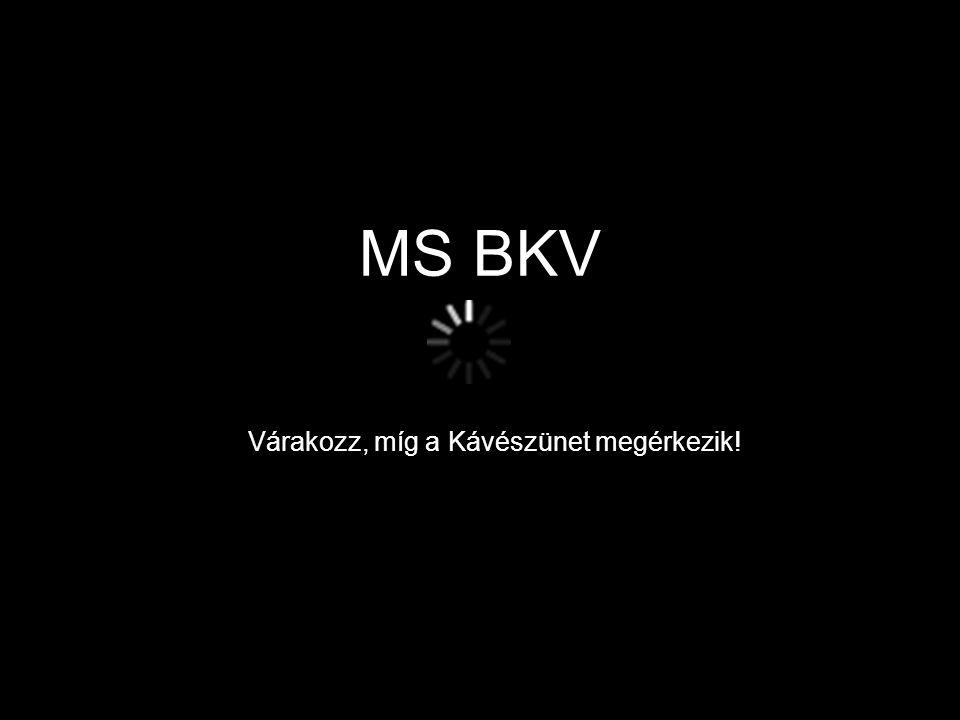 MS BKV Várakozz, míg a Kávészünet megérkezik!