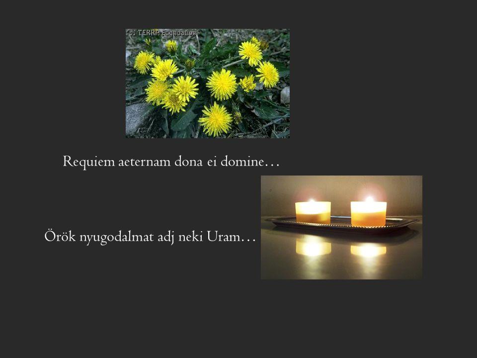 Requiem aeternam dona ei domine… Örök nyugodalmat adj neki Uram…